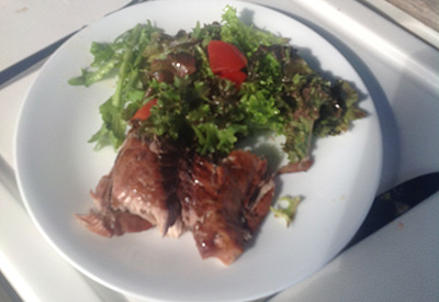 Eleuthera's barbecued bonito for lunch