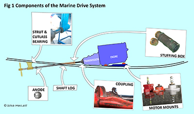 Components of the marine drive system